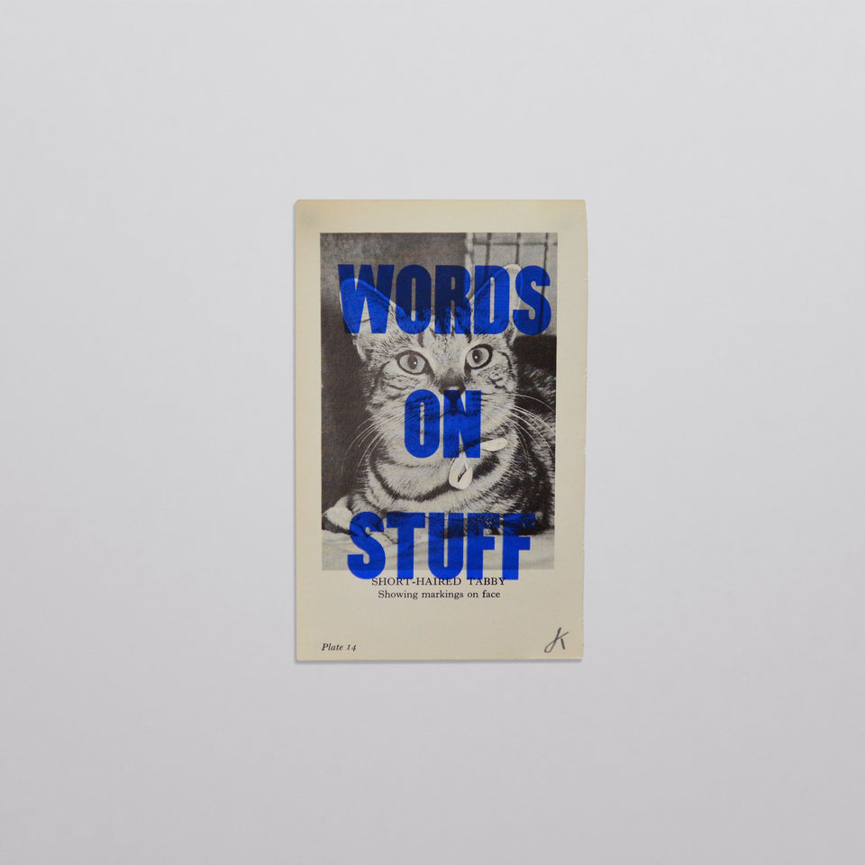Words on stuff - Cats 02 (blue)