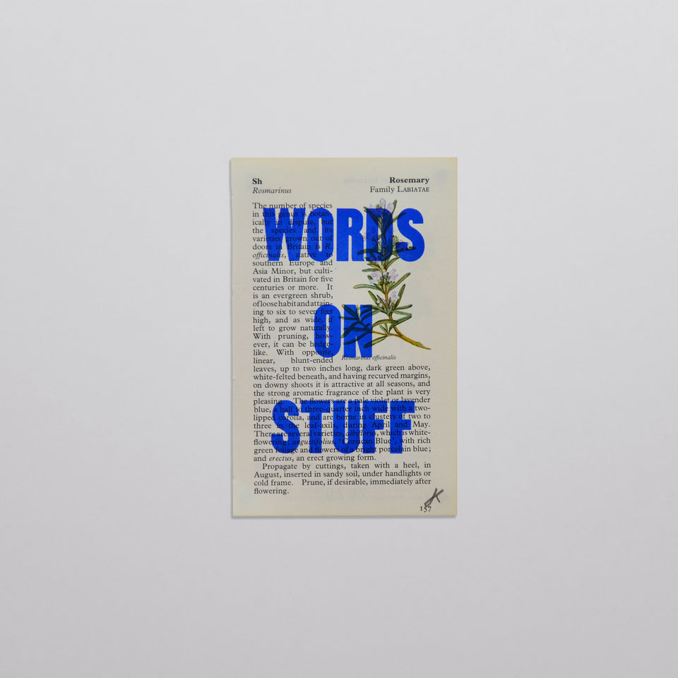 Words on stuff - Flowers 08 (blue)