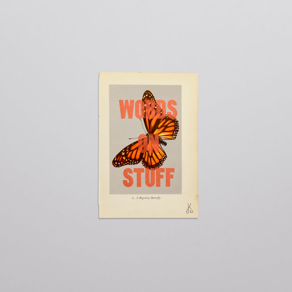 Words on stuff - Butterflies 04