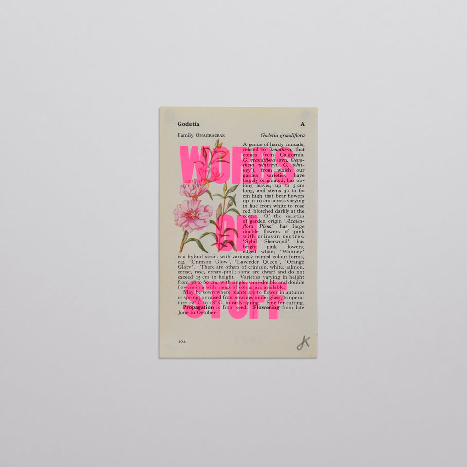 Words on stuff - Flowers 01 (pink)