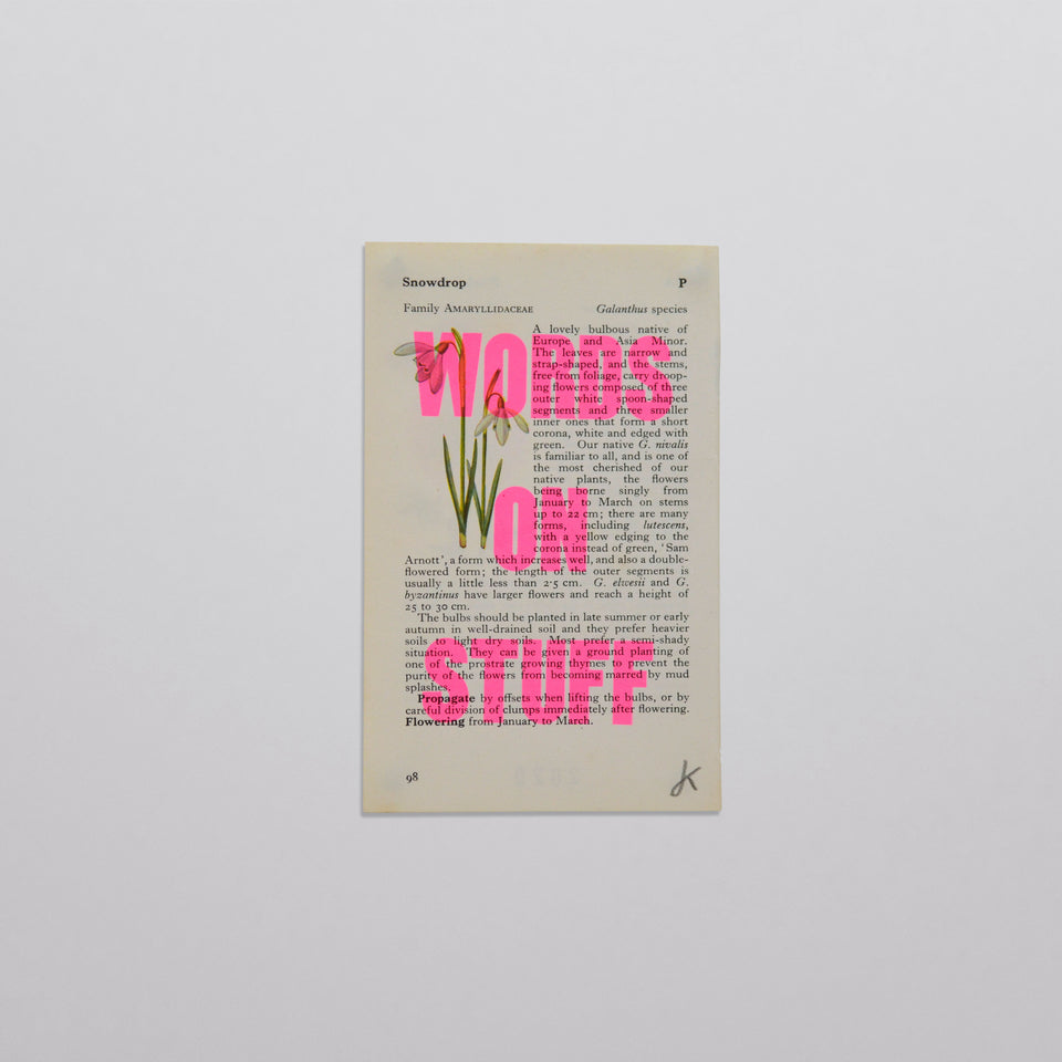 Words on stuff - Flowers 03 (pink)