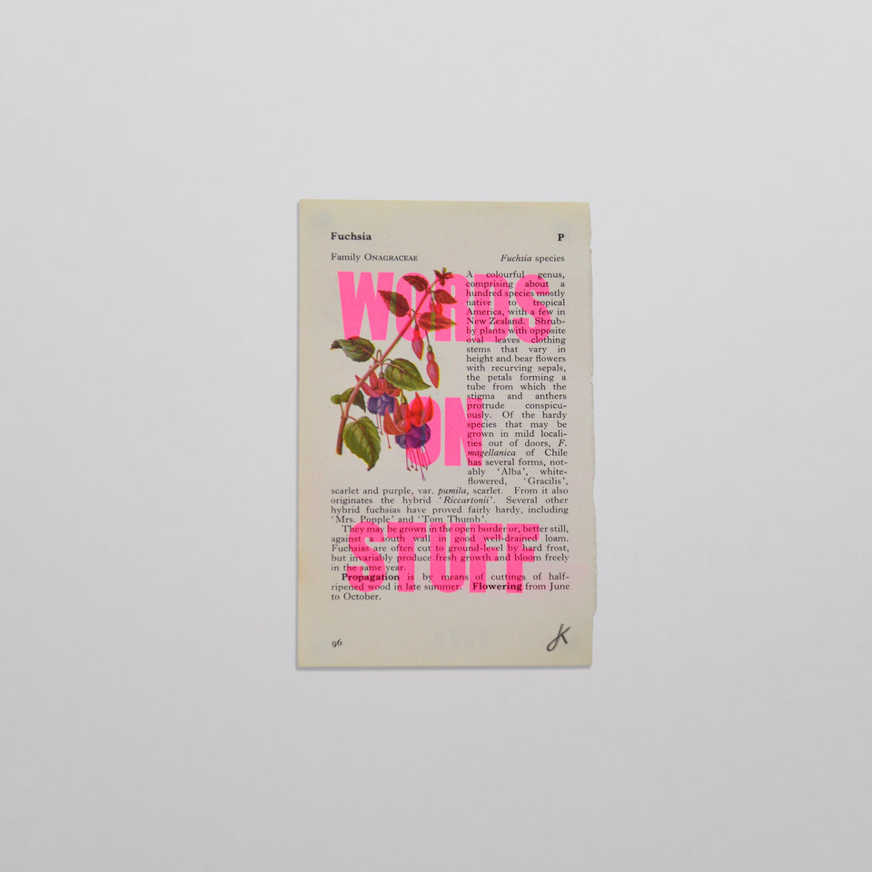 Words on stuff - Flowers 02 (pink)