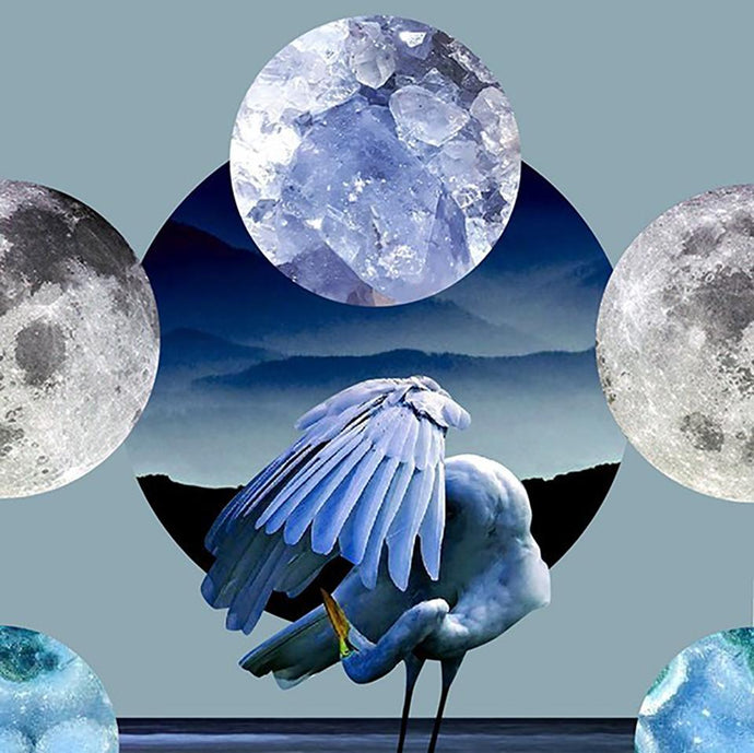 March Full Moon Tarotscopes: Rooted & Resourced
