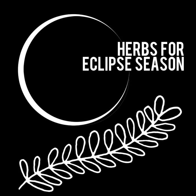 HERBS FOR ECLIPSE SEASON