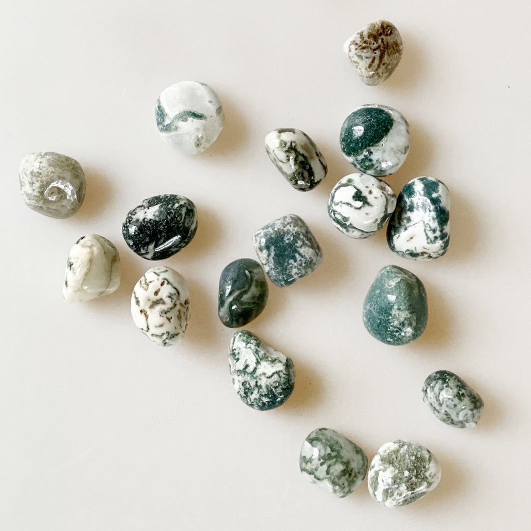 Tree Agate Tumbled Crystal