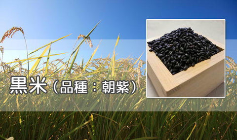 Black Rice from JAPAN