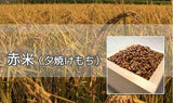 Red Rice 5kg (packaging with zipper)