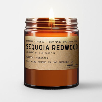 Sequoia Redwood: California Scented Candle  (Redwood, Cinnamon) - Organic World Nation