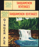 Vintage soda pop bottle label TAHQUAMENON Ginger Ale Newberry Michigan n-mint+