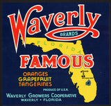 Vintage label WAVERLY FAMOUS fruit crate Florida Bok Singing Tower pictured n-mint+