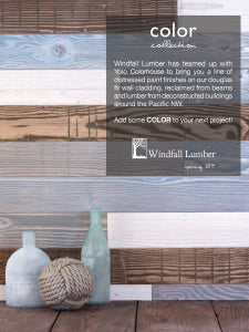 Windfall_ColorCollections_1text_300dpi