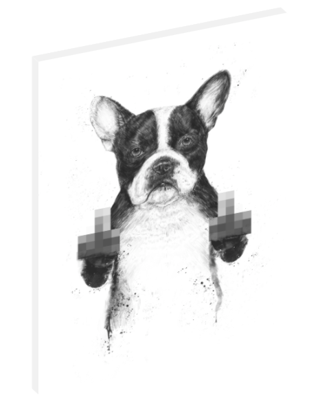 Canvas wall art illustration of dog with censored hand gestures by Balázs Solti.