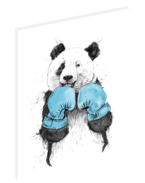"Canvas wall art illustration of panda bear boxing titled ""The Winner"" by Balázs Solti."