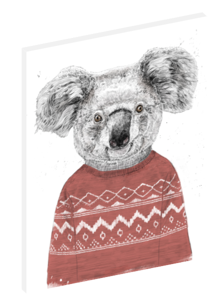 Canvas print wall art illustration of a koala in a red or blue winter sweater by Balázs Solti.