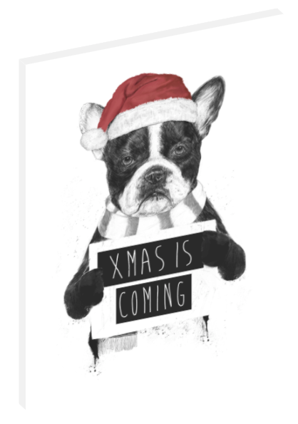 "Canvas print wall art illustration of a dog holding a sign titled ""Xmas Is Coming"" by Balázs Solti."