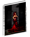 Canvas wall art digital print of a woman in a red dress by Johan Marais.