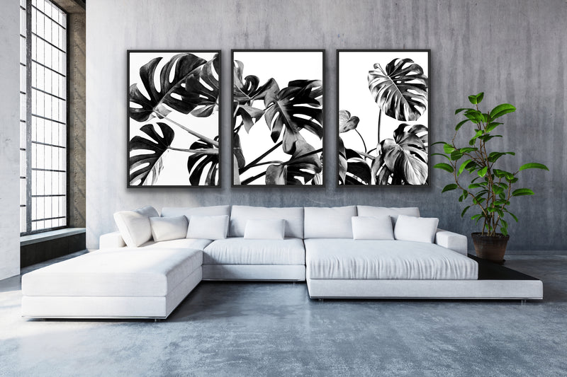 Tropical Paradise Collection