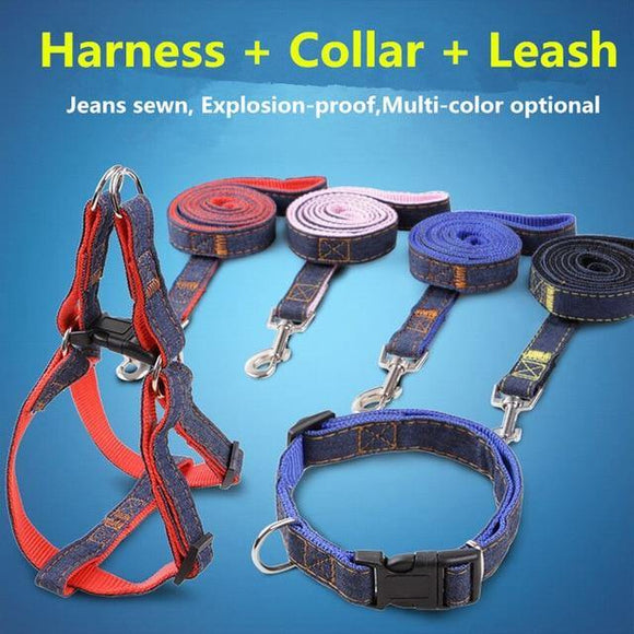 Handmade Denim Collar, Harness & Leash for your Pet - THE GOOD TINGZ