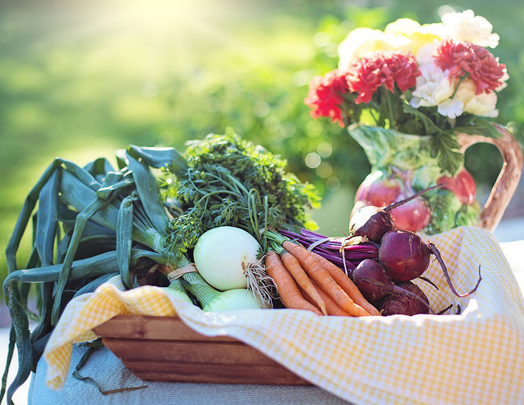 Ten Reasons to Go Organic All Year Long