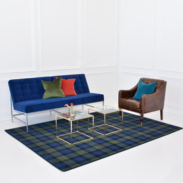 gunn modern area rug with aston blue sofa