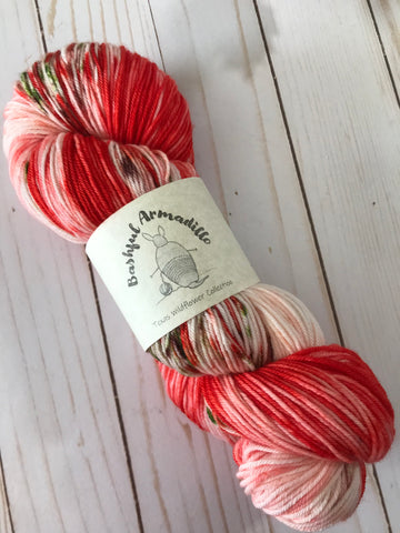 Indian Paintbrush - Fingering/Sock Yarn
