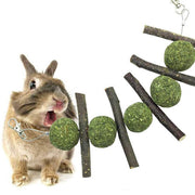 Toy for Rabbit