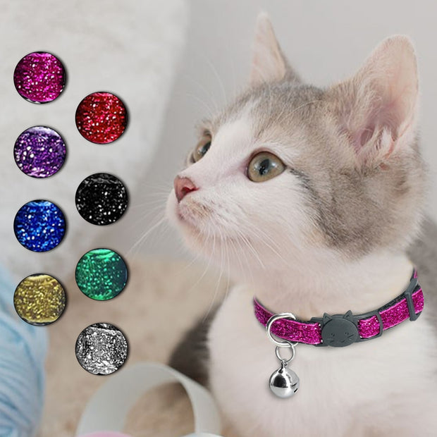 Collar for Cats