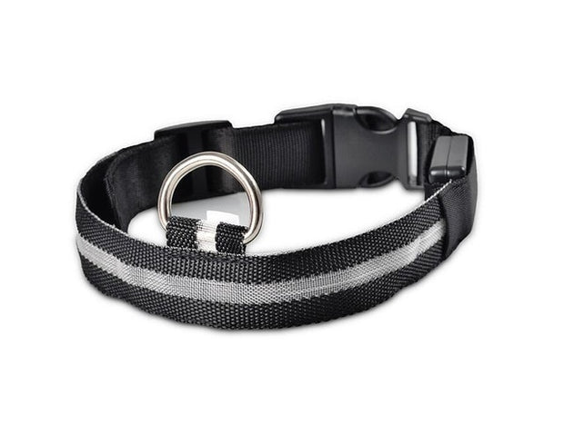 LED Pet Nylon  Collar