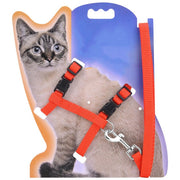Traction Harness Belt Cat
