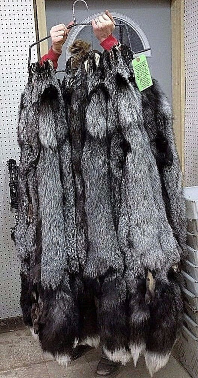 "Tanned Large (52"" plus) Silver Fox Hide"