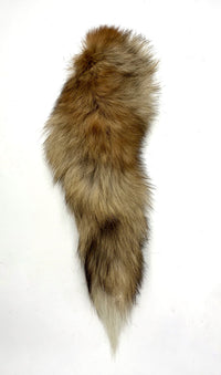 "Light Colored Snow Tipped Red Fox Tail Key Chain 13""+  pressed Grommet (offsnowtip)"