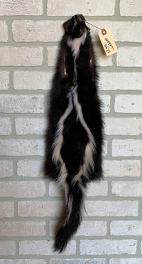 "Tanned Skunk Pelt, defined stripes, Prime Fur 29""+ tip to tip. (sk4-19S)"