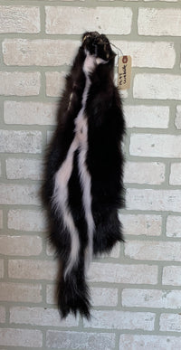 "Tanned Skunk Pelt, defined stripes, Prime Fur 26""+ tip to tip. (sk4-19M)"