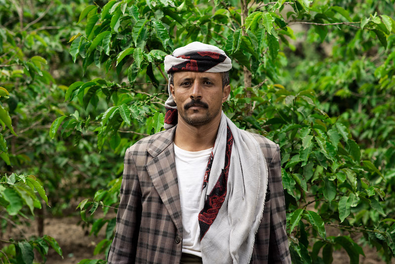 YEMEN SAGEER AL KHOULANI AA - DIRECT TRADE