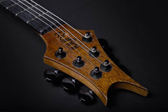 Rufini Guitars Fleshgod Apocalypse Flying V