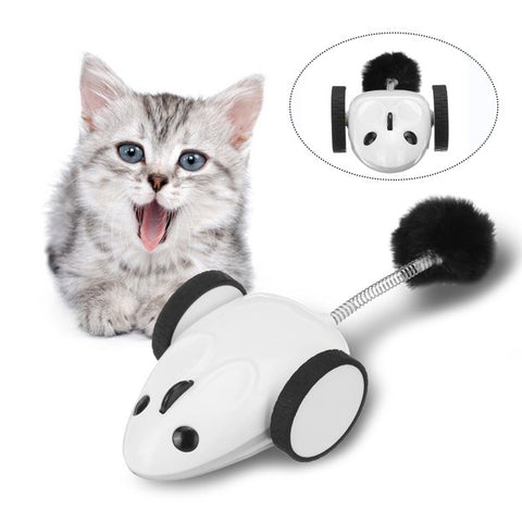 360° RaceMouse [with Android/iOS RemoteControl App] - The Pet Shopco