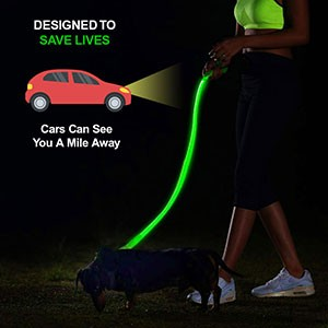 VISIBILITY LEASH - The Pet Shopco