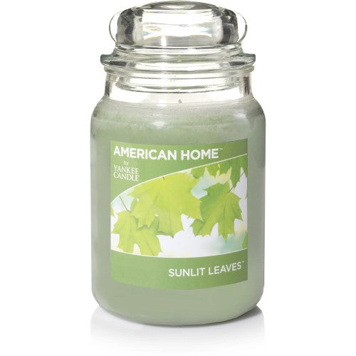 Yankee American Home Candle Sunlit Leaves 19oz