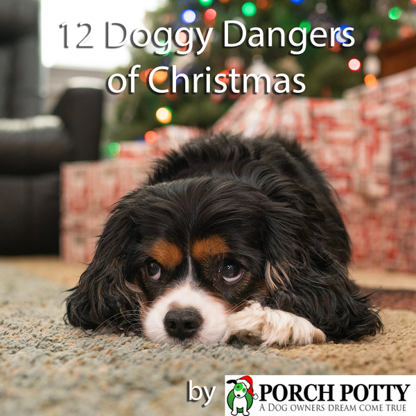 THE 12 DOGGY DANGERS OF CHRISTMAS