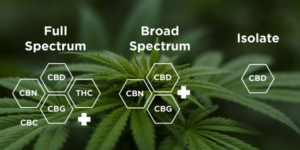 The Difference Between Isolate, Broad Spectrum and Full Spectrum CBD