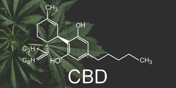 Your Essential Guide To Buying CBD Oil In The UK & Its Benefits