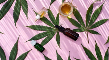 What Is CBD? Everything You Need to Know