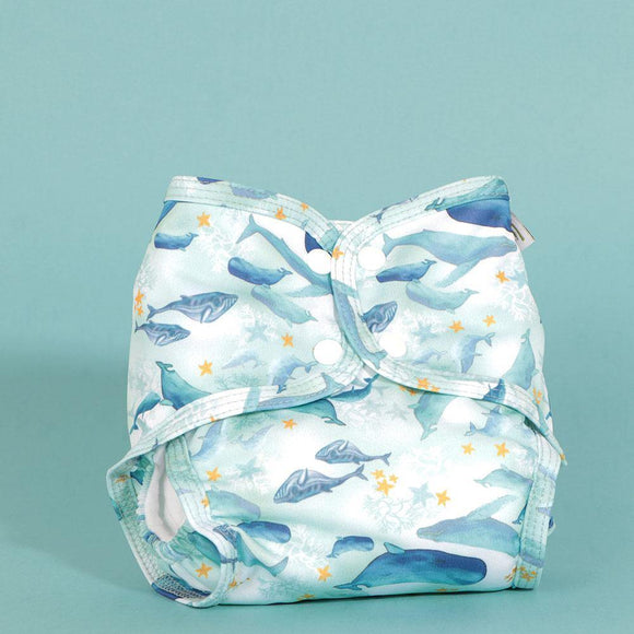 Little Lamb Sized Pocket - Under the Sea - Summer Sweets Baby