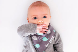Waves - Organic Cotton Bib Set