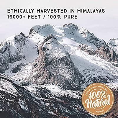 Pure Himalayan Gold Shilajit Resin (FSSAI Certified)