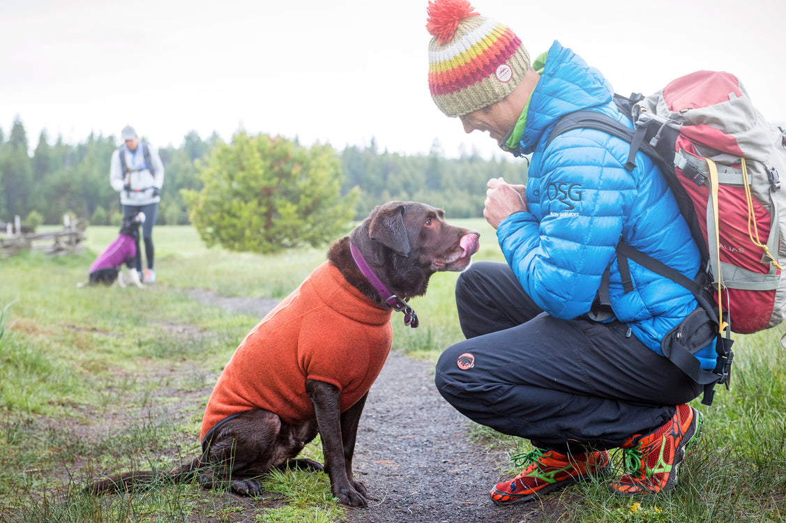 New 2015 Ruffwear gear