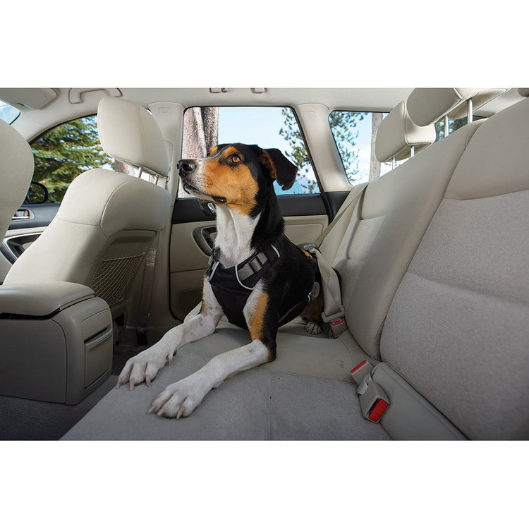 The all new Ruffwear Load- up vehicle  restraint harness