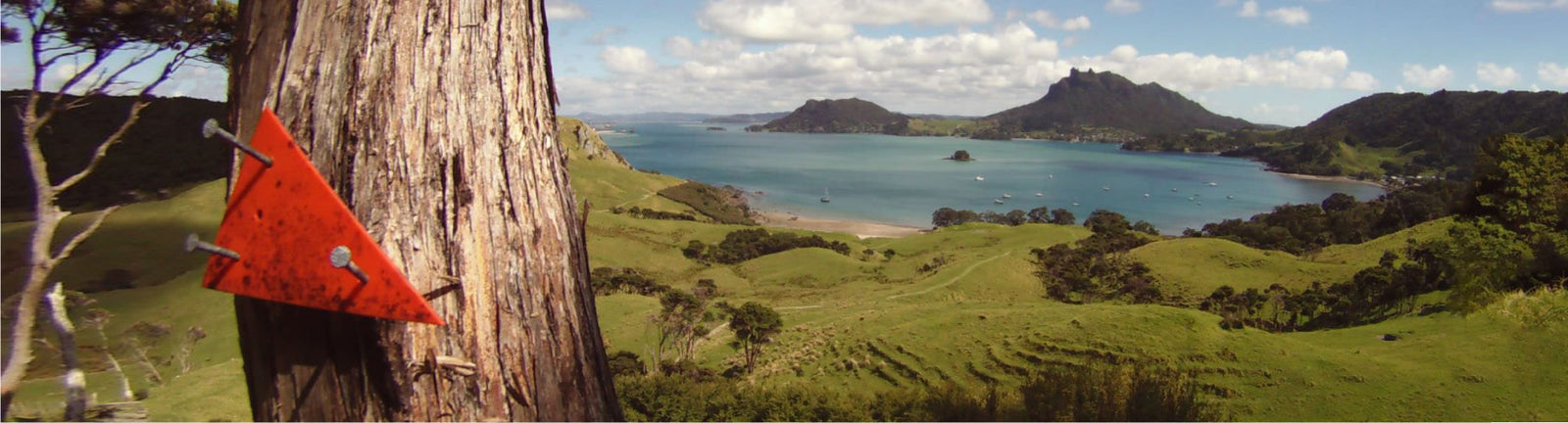 Hiking the Te Araroa, North to South.