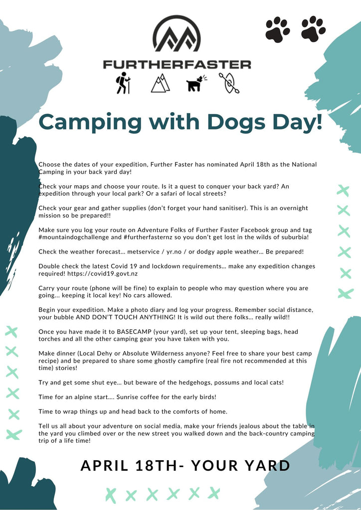 camping with dogs nz