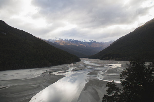 The Dart River New Zealand